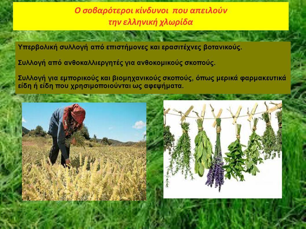 Ο σοβαρότεροι κίνδυνοι που απειλούν την ελληνική χλωρίδα