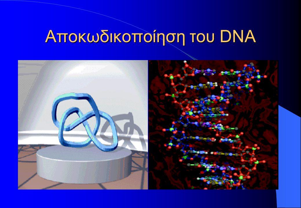 Αποκωδικοποίηση του DNA
