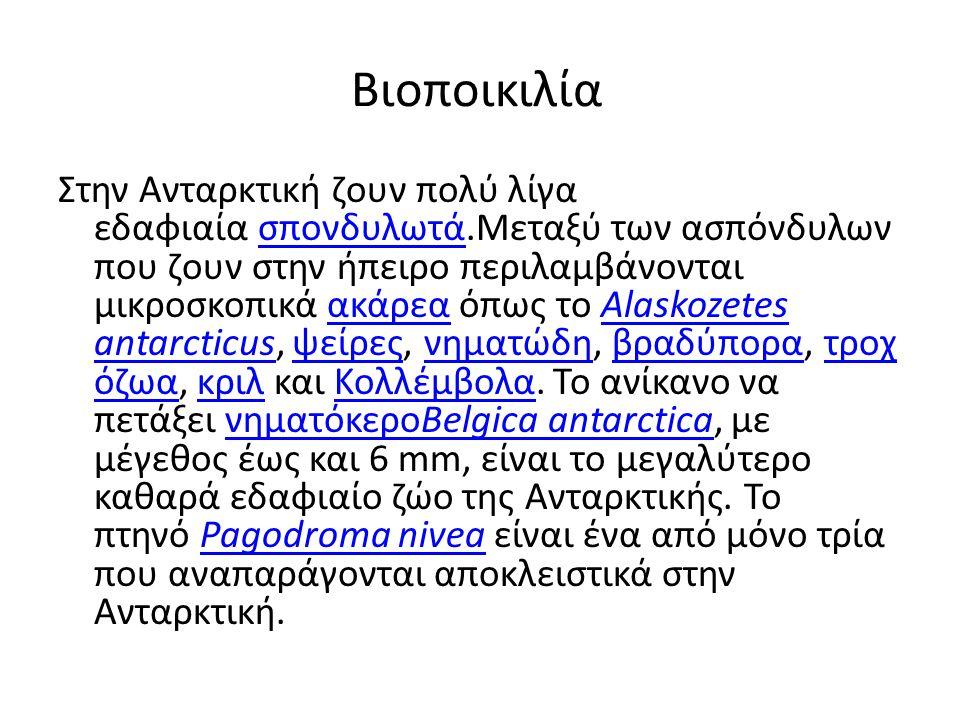Βιοποικιλία
