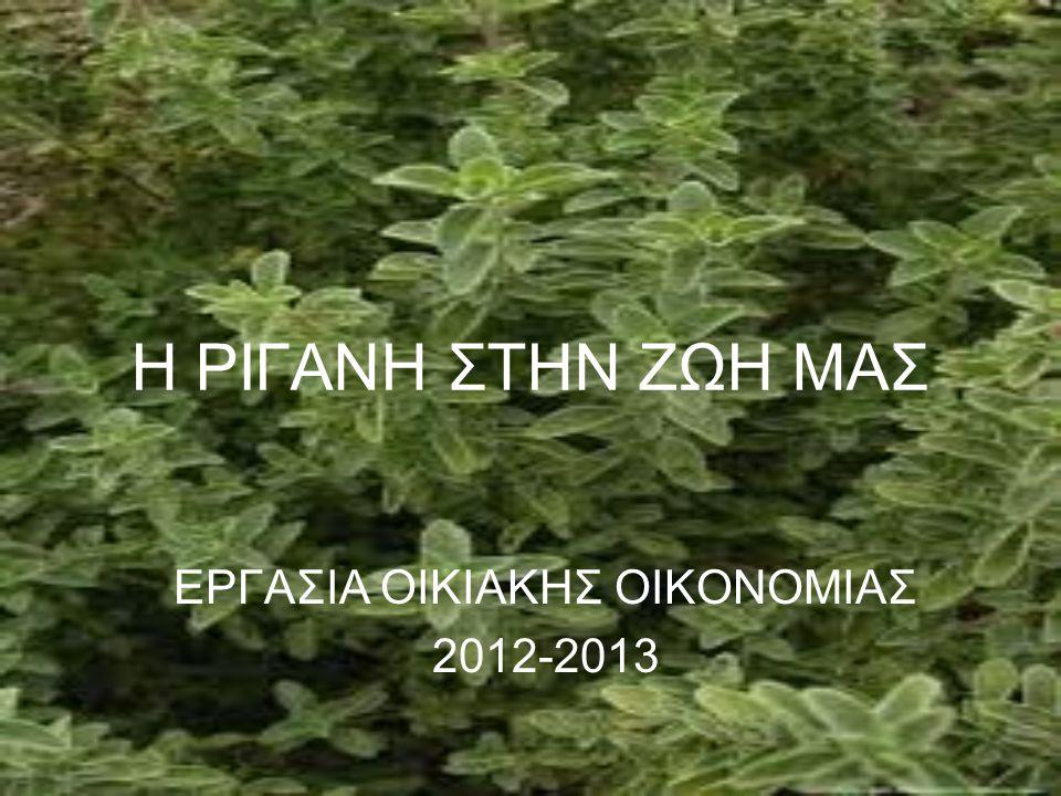 ΕΡΓΑΣΙΑ ΟΙΚΙΑΚΗΣ ΟΙΚΟΝΟΜΙΑΣ 2012-2013