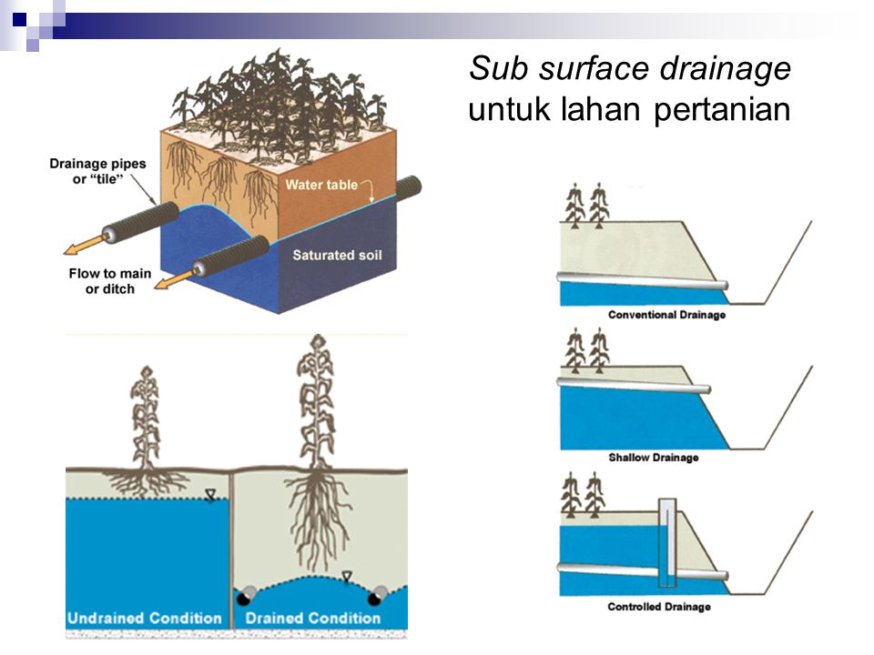 Sub surface drainage untuk lahan pertanian