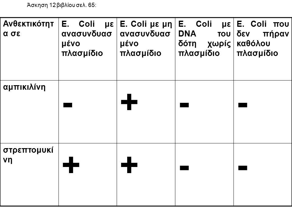 - + Ανθεκτικότητα σε E. Coli με ανασυνδυασμένο πλασμίδιο