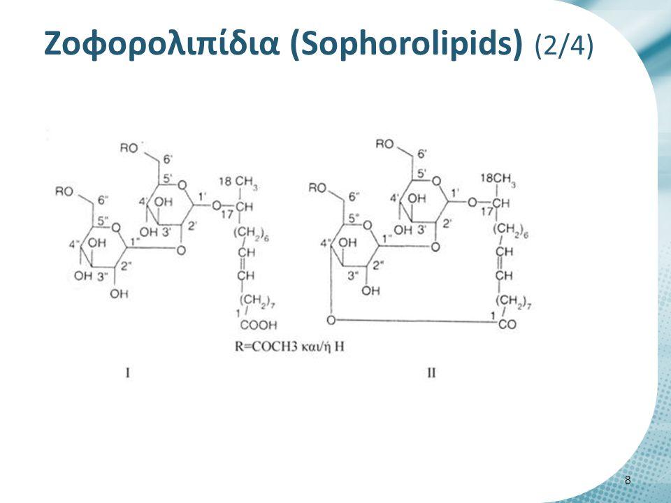 Zοφορολιπίδια (Sophorolipids) (3/4)