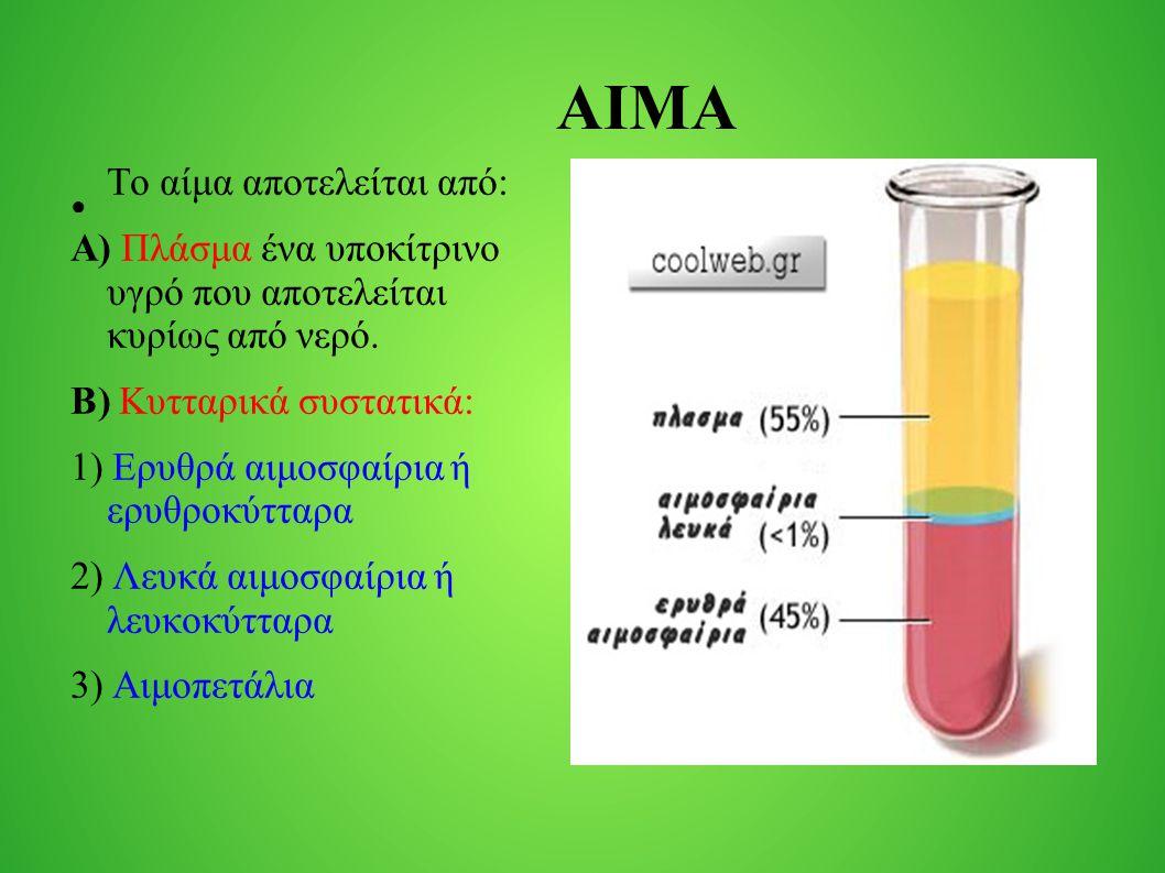 ΑΙΜΑ Το αίμα αποτελείται από: