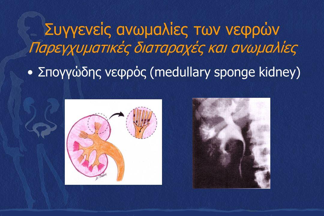Συγγενείς ανωμαλίες των νεφρών Παρεγχυματικές διαταραχές και ανωμαλίες