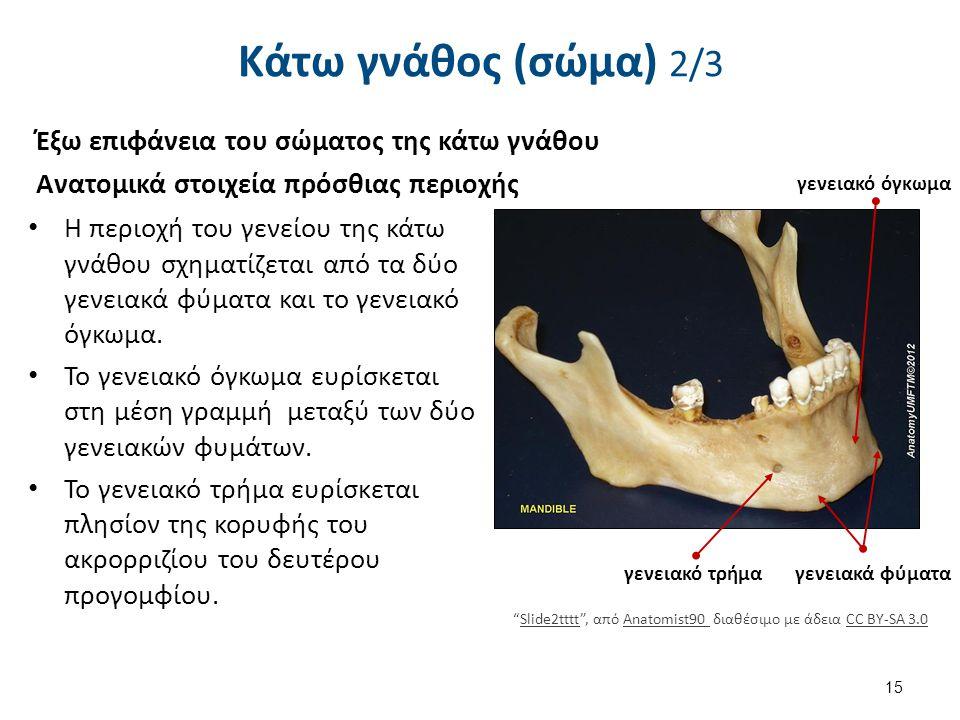 Slide7oooo , από Anatomist90 διαθέσιμο με άδεια CC BY-SA 3.0
