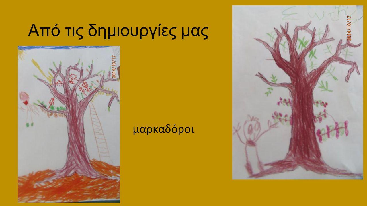 Από τις δημιουργίες μας