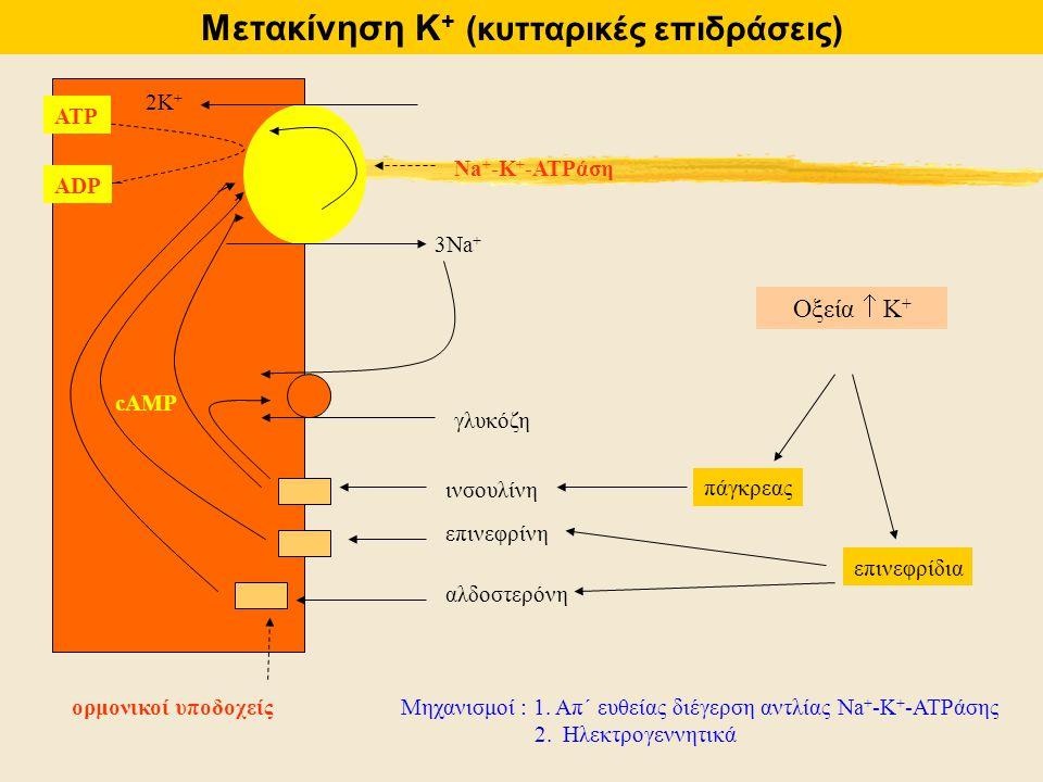 Μετακίνηση Κ+ (κυτταρικές επιδράσεις)