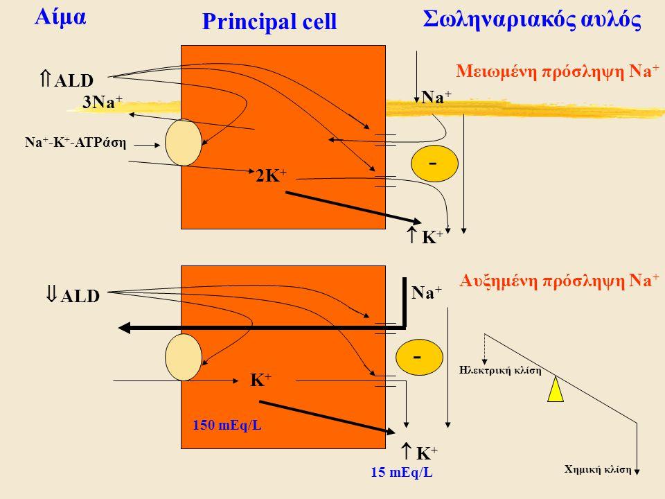 - - Αίμα Σωληναριακός αυλός Principal cell Μειωμένη πρόσληψη Na+  ALD