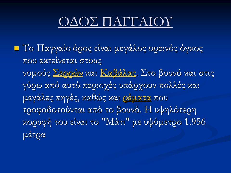 ΟΔΟΣ ΠΑΓΓΑΙΟΥ