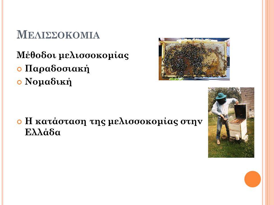 Μελισσοκομια Μέθοδοι μελισσοκομίας Παραδοσιακή Νομαδική