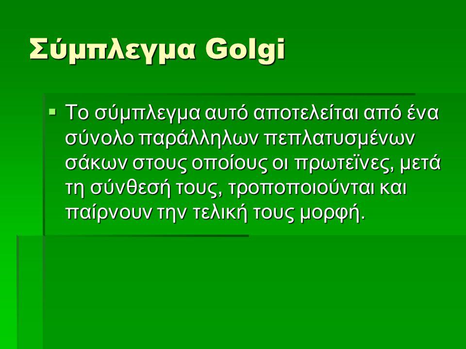 Σύμπλεγμα Golgi