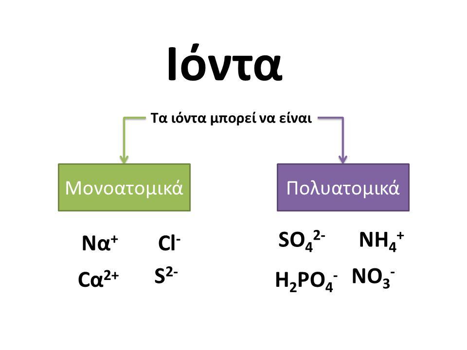 Ιόντα SO42- NH4+ Να+ Cl- S2- NO3- Cα2+ H2PO4- Μονοατομικά Πολυατομικά