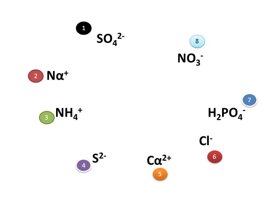 1 SO42- 8 NO3- Να+ 2 7 NH4+ H2PO4- 3 Cl- S2- Cα2+ 6 4 5