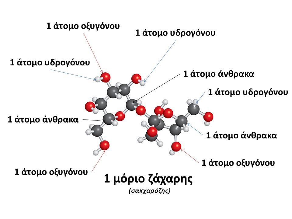 1 μόριο ζάχαρης 1 άτομο οξυγόνου 1 άτομο υδρογόνου 1 άτομο υδρογόνου