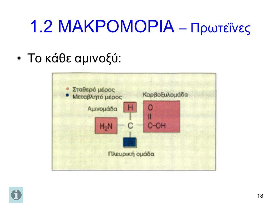 1.2 ΜΑΚΡΟΜΟΡΙΑ – Πρωτεΐνες
