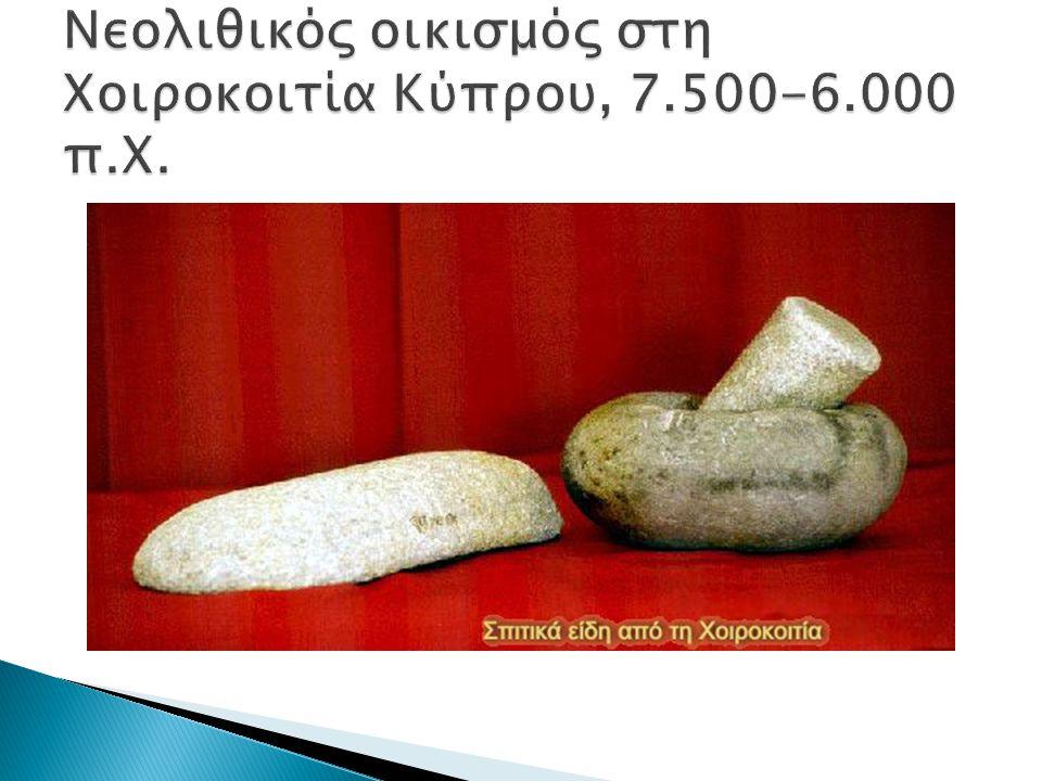 Νεολιθικός οικισμός στη Χoιρoκοιτία Κύπρου, 7.500-6.000 π.Χ.