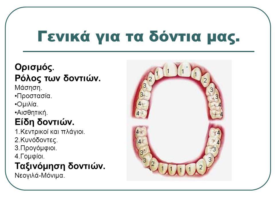Γενικά για τα δόντια μας.