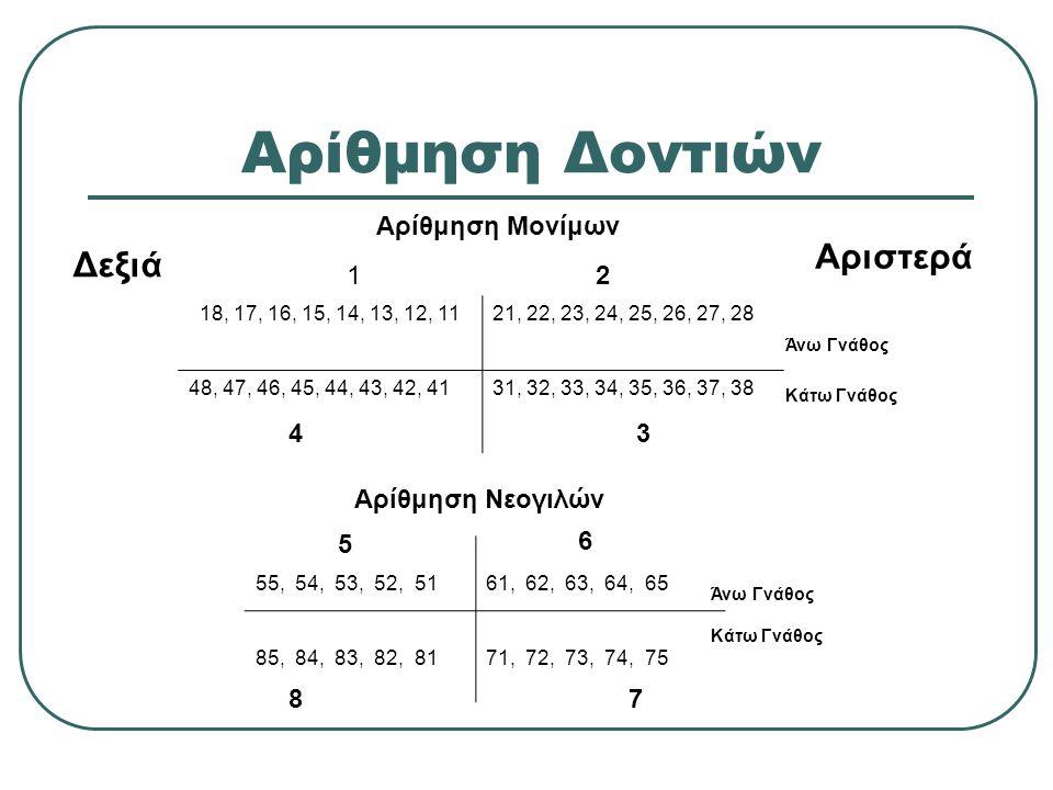 Αρίθμηση Δοντιών Αριστερά Δεξιά Αρίθμηση Μονίμων 1 2 4 3