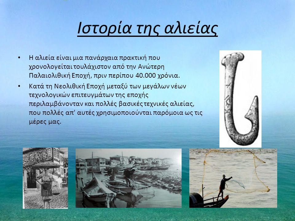Ιστορία της αλιείας