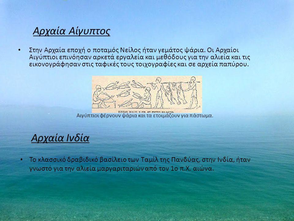 Αρχαία Αίγυπτος Αρχαία Ινδία
