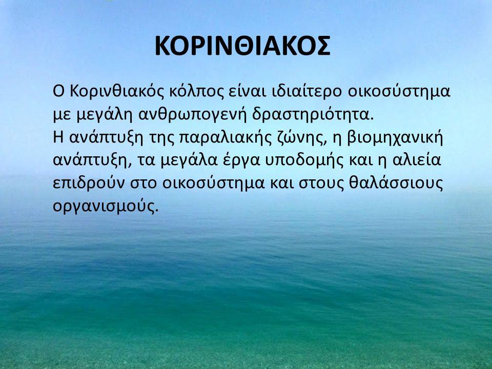 ΚΟΡΙΝΘΙΑΚΟΣ