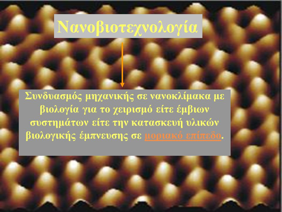 Νανοβιοτεχνολογία
