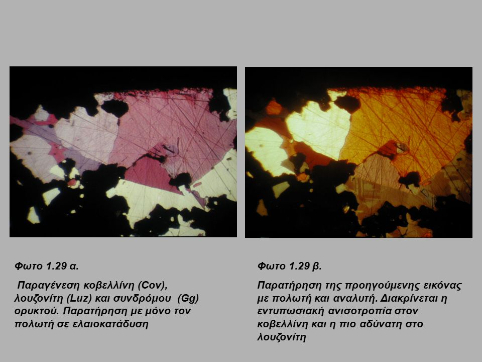 Φωτο 1.29 α. Παραγένεση κοβελλίνη (Cov), λουζονίτη (Luz) και συνδρόμου (Gg) ορυκτού. Παρατήρηση με μόνο τον πολωτή σε ελαιοκατάδυση.