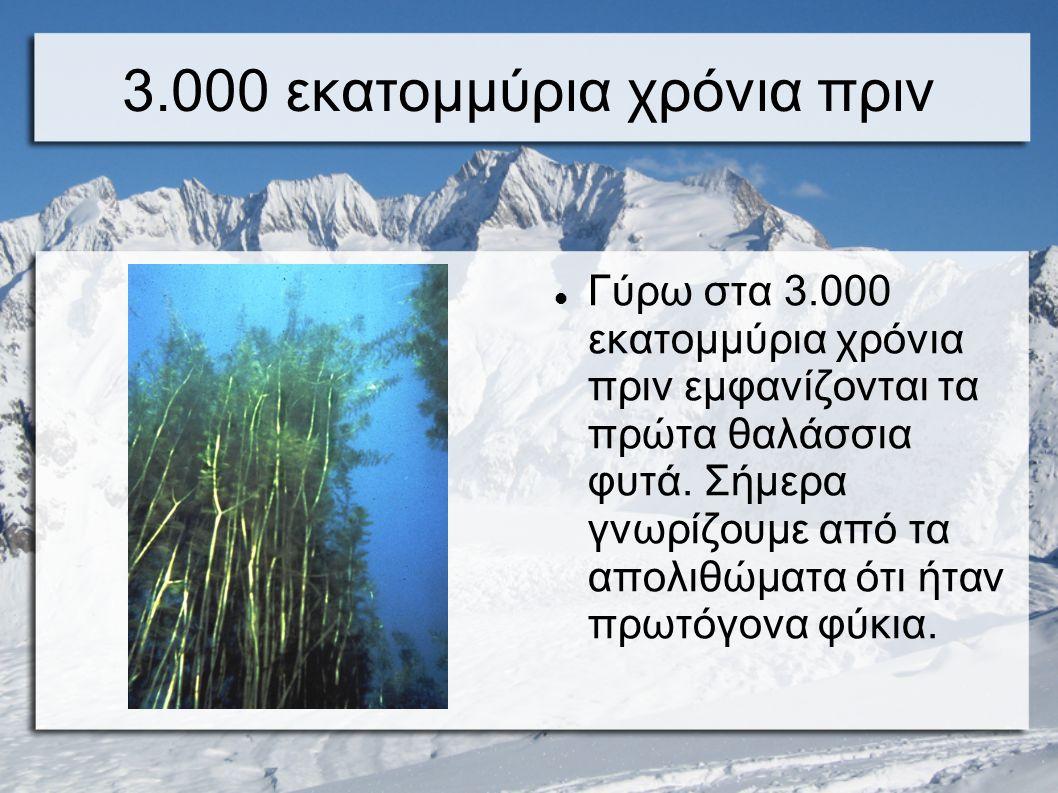 3.000 εκατομμύρια χρόνια πριν
