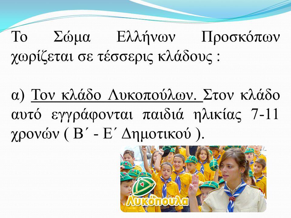 Το Σώμα Ελλήνων Προσκόπων χωρίζεται σε τέσσερις κλάδους :