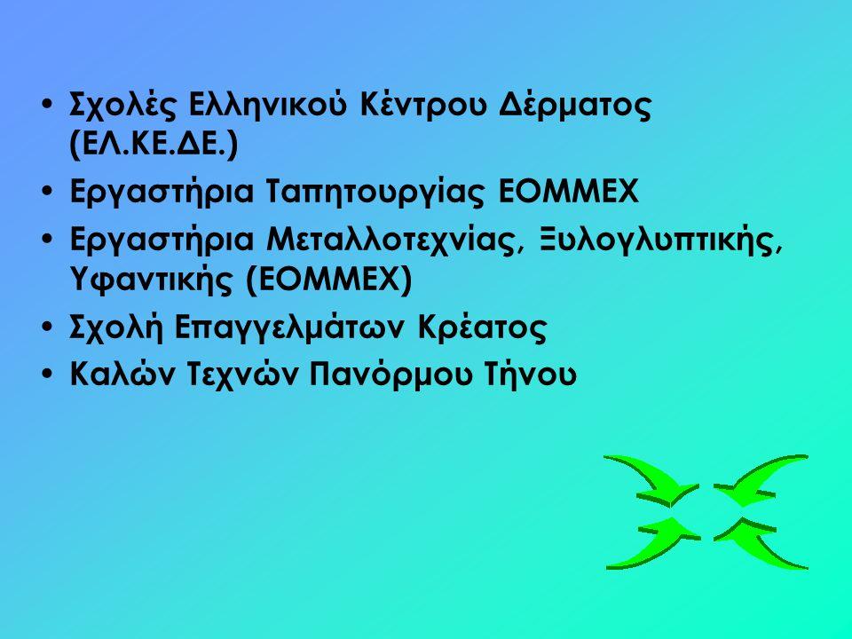 Σχολές Ελληνικού Κέντρου Δέρματος (ΕΛ.ΚΕ.ΔΕ.)