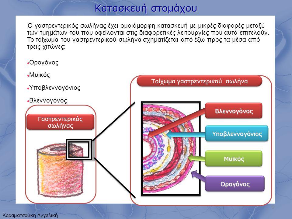 Κατασκευή στομάχου