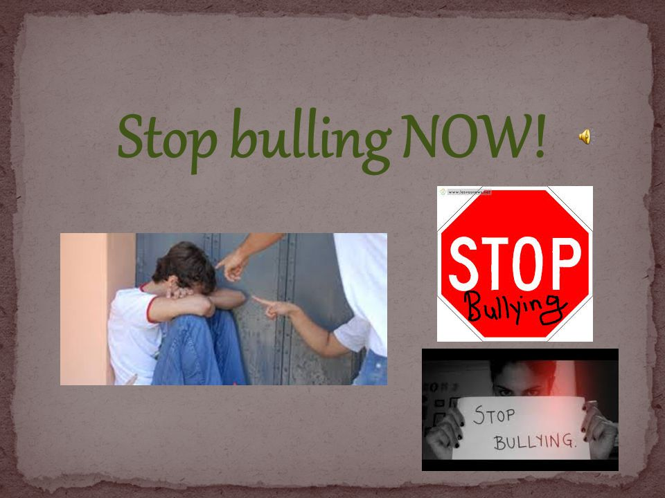 Stop bulling NOW!
