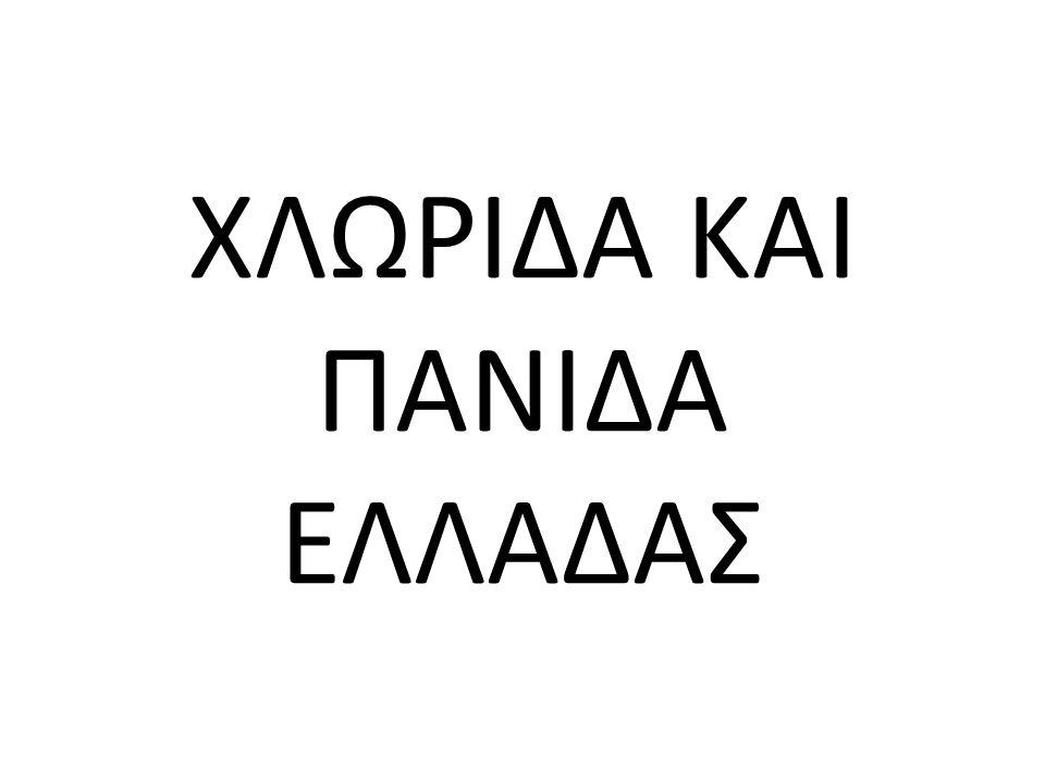 ΧΛΩΡΙΔΑ ΚΑΙ ΠΑΝΙΔΑ ΕΛΛΑΔΑΣ