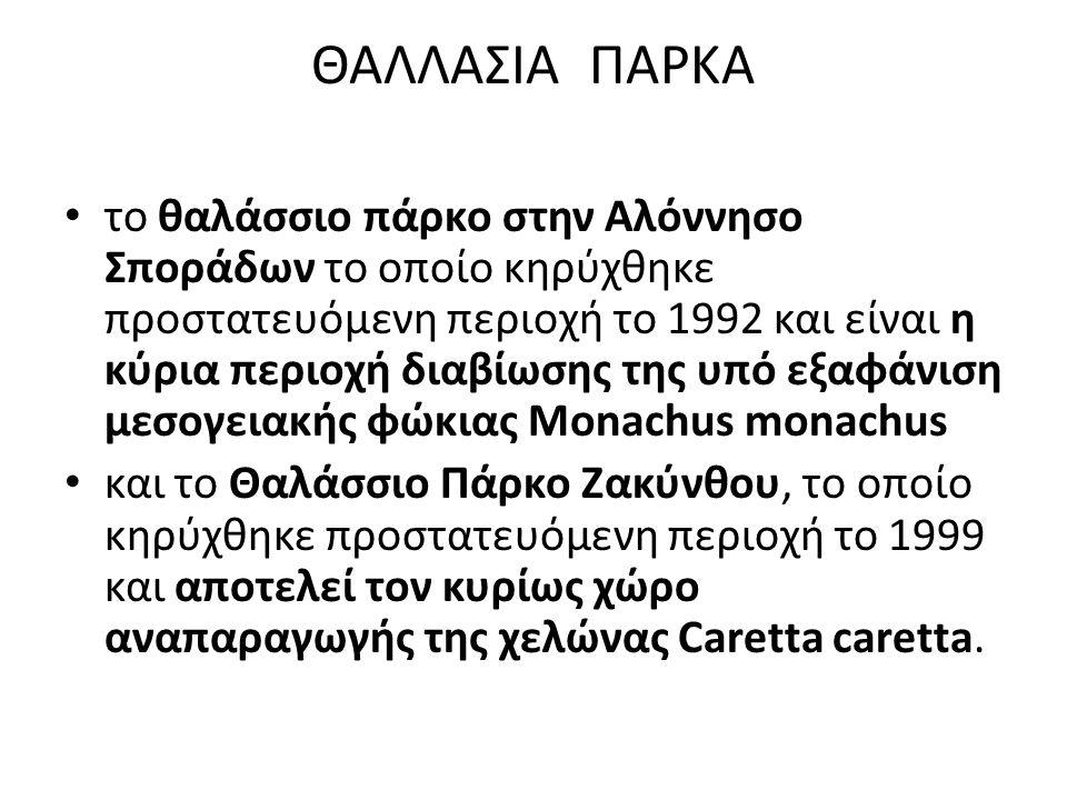 ΘΑΛΛΑΣΙΑ ΠΑΡΚΑ