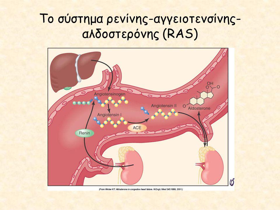 Το σύστημα ρενίνης-αγγειοτενσίνης-αλδοστερόνης (RAS)