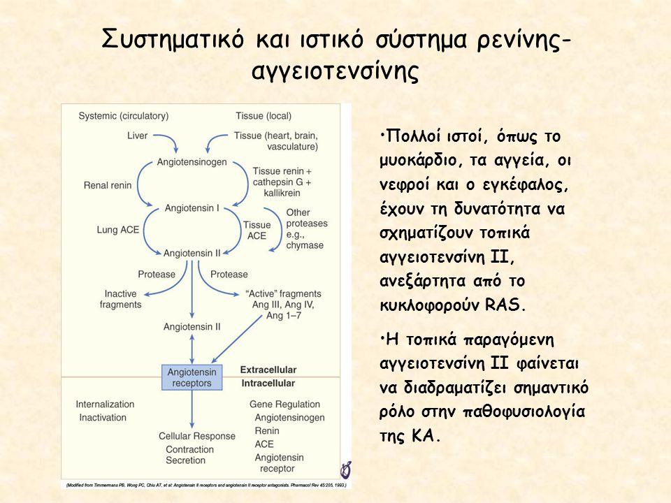 Συστηματικό και ιστικό σύστημα ρενίνης-αγγειοτενσίνης