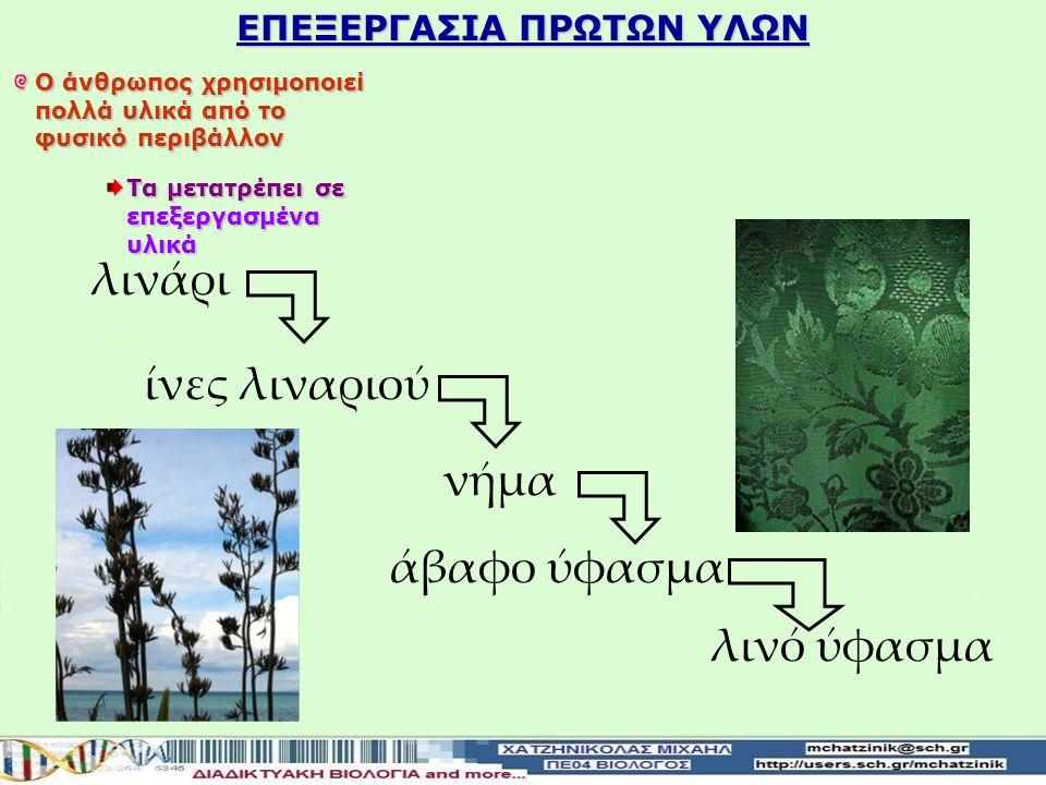 ΕΠΕΞΕΡΓΑΣΙΑ ΠΡΩΤΩΝ ΥΛΩΝ
