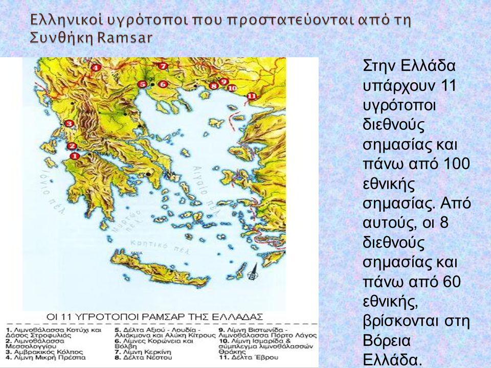 Ελληνικοί υγρότοποι που προστατεύονται από τη Συνθήκη Ramsar