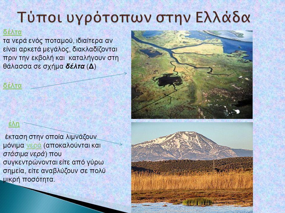 Τύποι υγρότοπων στην Ελλάδα