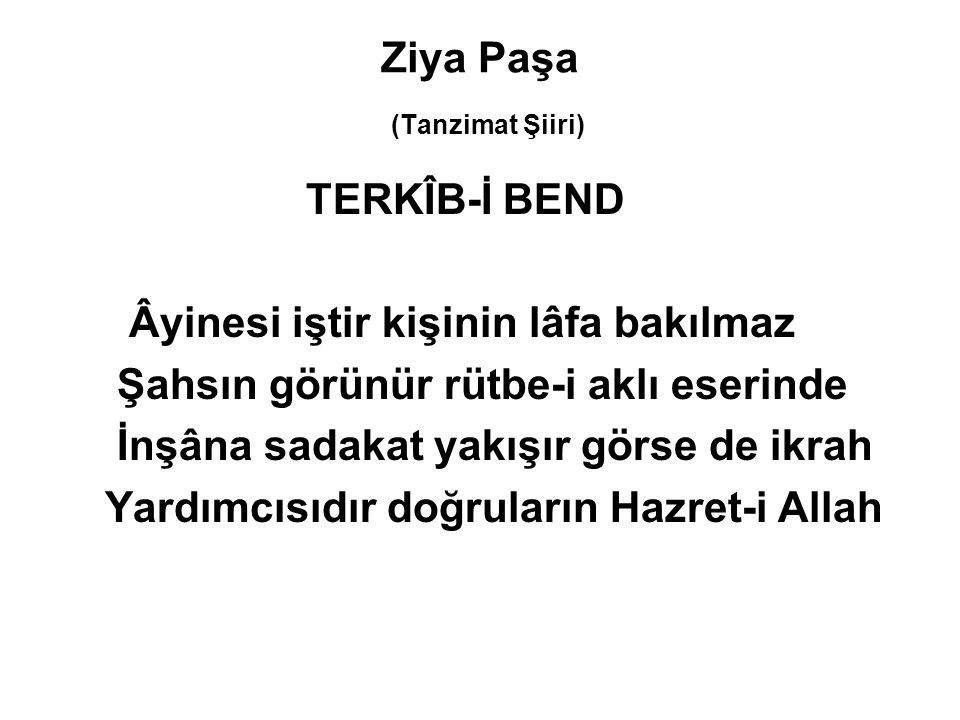 Ziya Paşa (Tanzimat Şiiri)