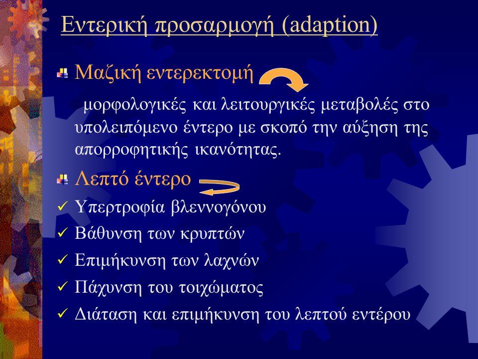 Εντερική προσαρμογή (adaption)