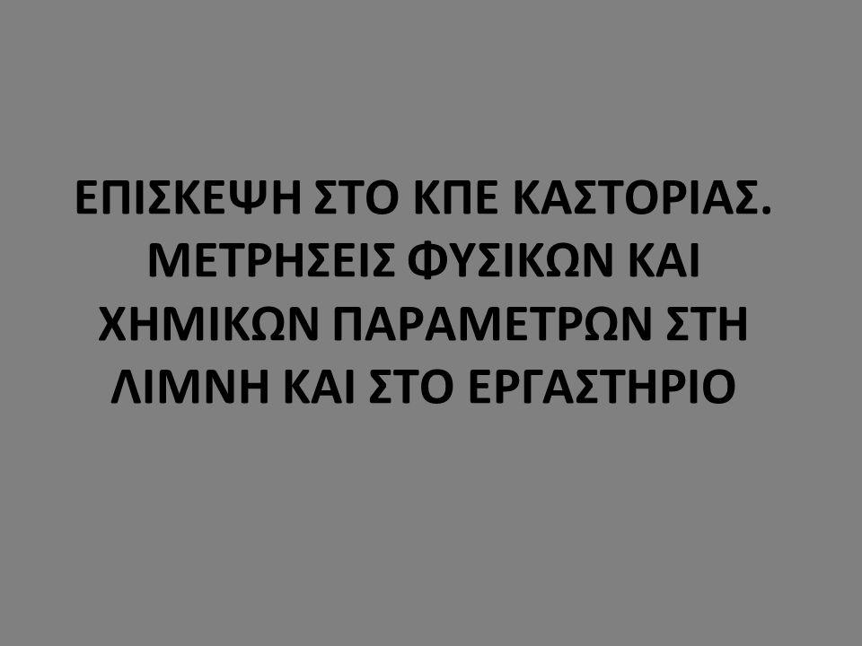 ΕΠΙΣΚΕΨΗ ΣΤΟ ΚΠΕ ΚΑΣΤΟΡΙΑΣ