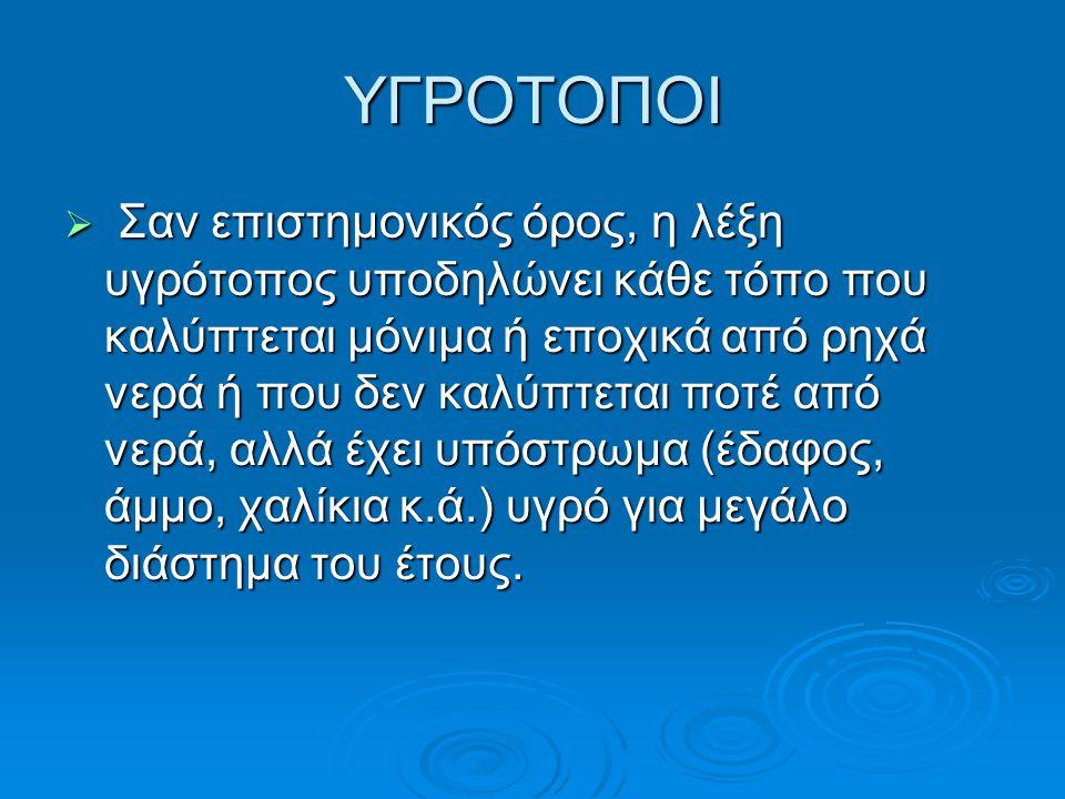 ΥΓΡΟΤΟΠΟΙ