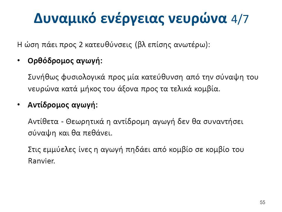 Δυναμικό ενέργειας νευρώνα 5/7