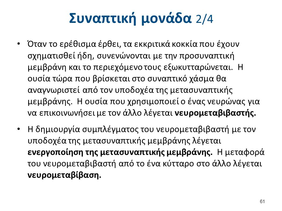 Συναπτική μονάδα 3/4