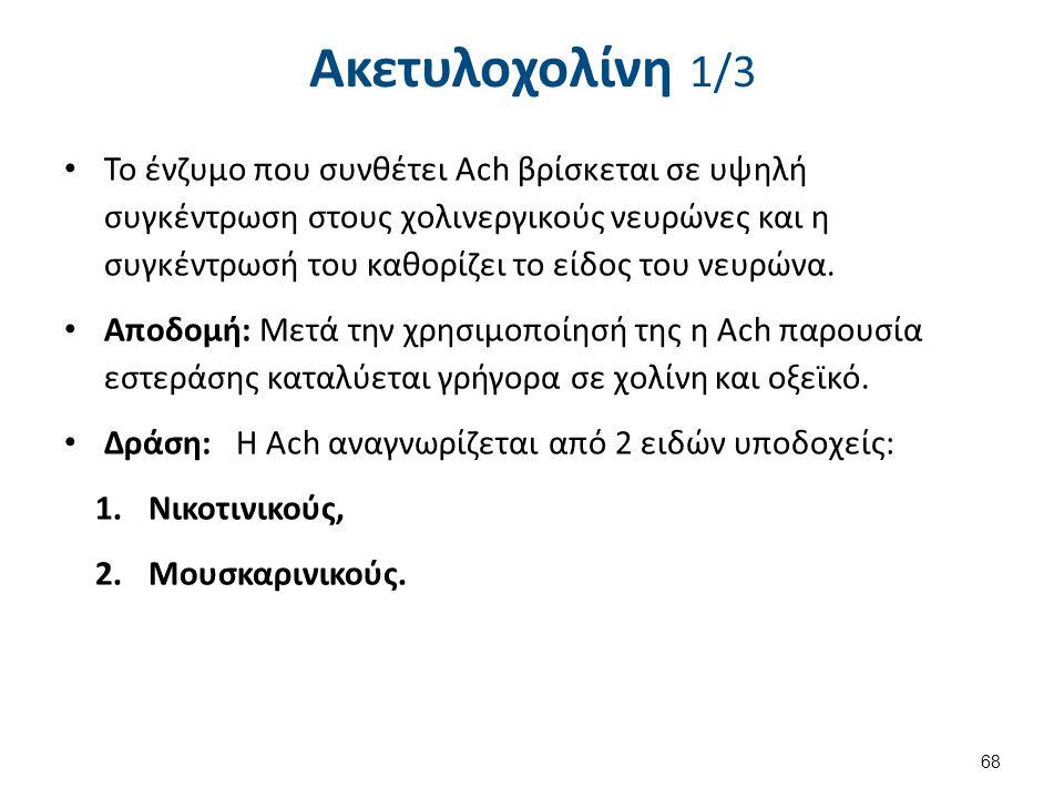 Ακετυλοχολίνη 2/3