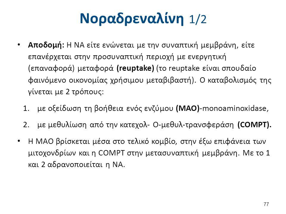 Νοραδρεναλίνη 2/2 Δράσεις της ΝΑ στο ΚΝΣ: Εγρήγορση (Ύπνος).