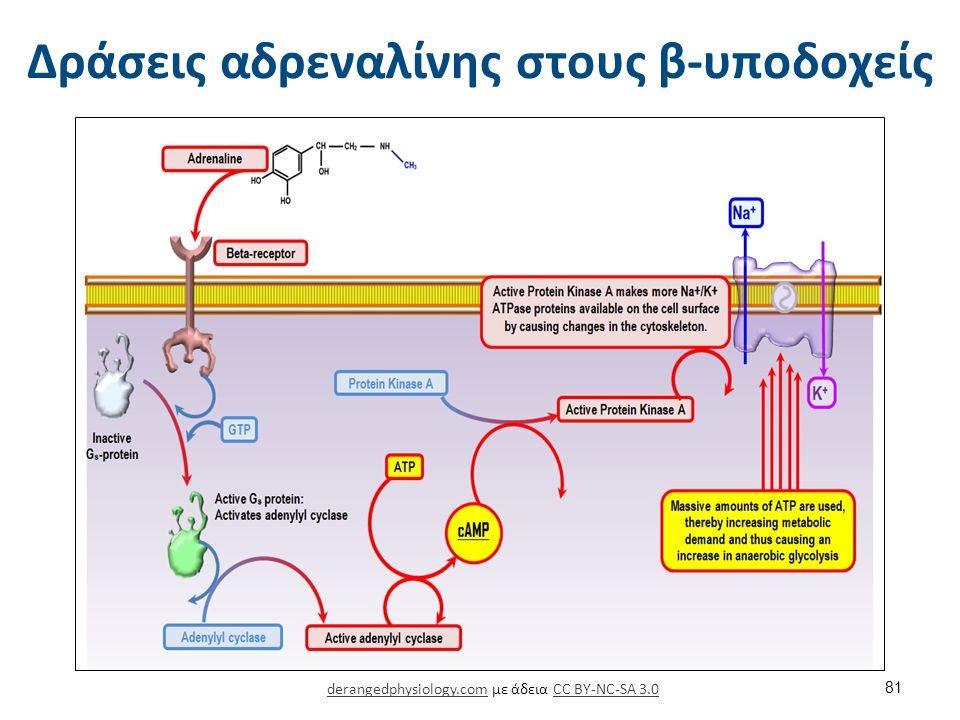 Δοπαμίνη 1/2 Δοπαμίνη (DA)