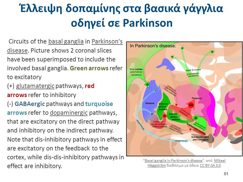 Επίδραση της κοκαΐνης στην συναπτική σχισμή δοπαμινεργικού νευρώνα
